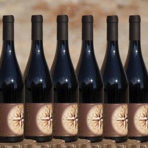 12 Bottiglie di Libeccio 225 lambrusco grasparossa