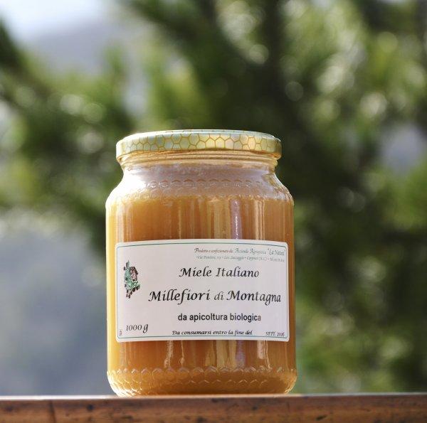 Miele millefiori di montagna 1000g