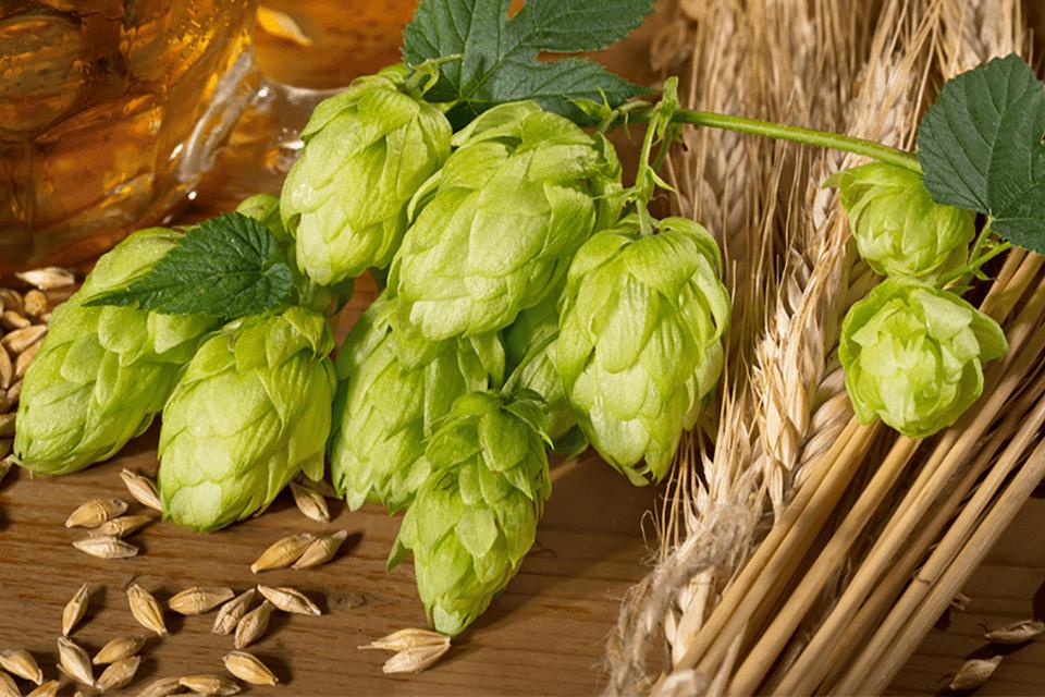 birre ale inglesi